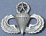 Airborne/Pilot Wings